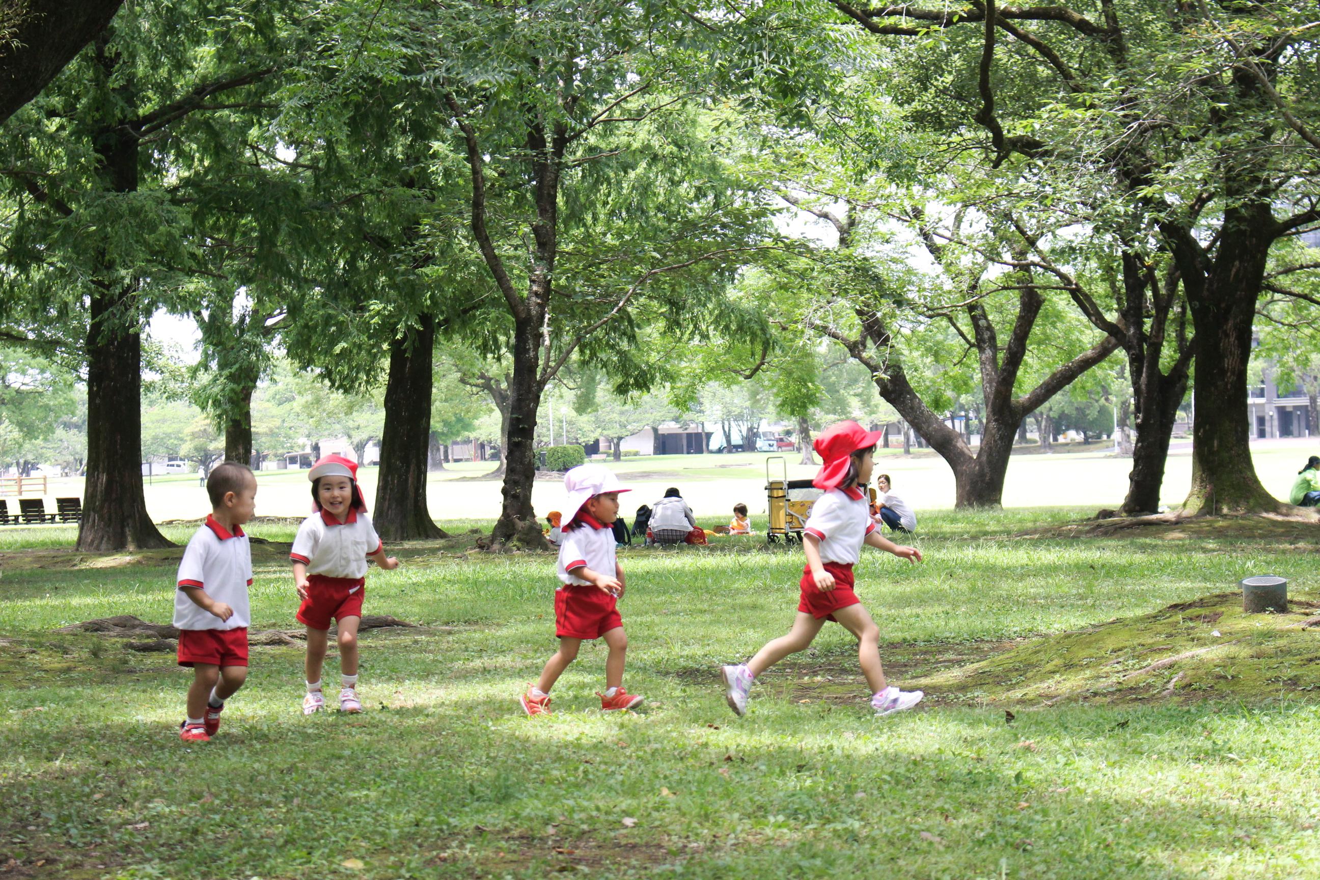 園外保育(7月・文化の森公園)